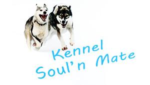 SoulMate Huskies