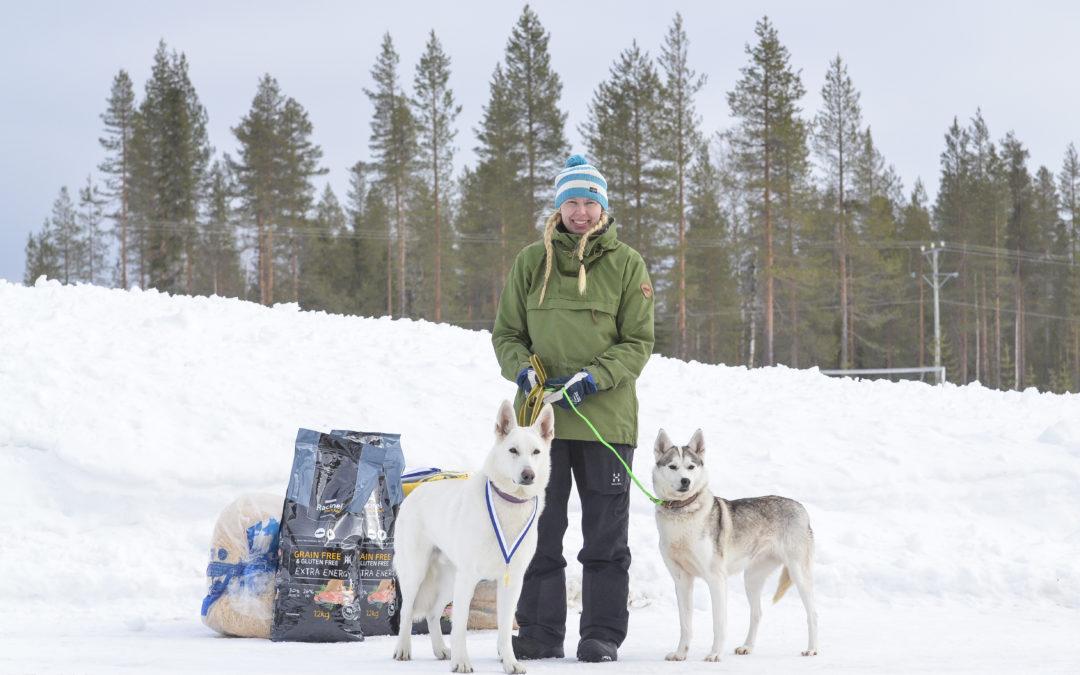 SM-REKÄ-JOH-19 & REKÄ käyttökoe