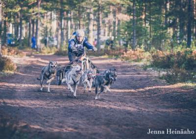Jämi2015